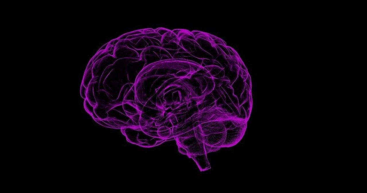 5 Brain-Boosting Supplements to Sharpen Your Mind