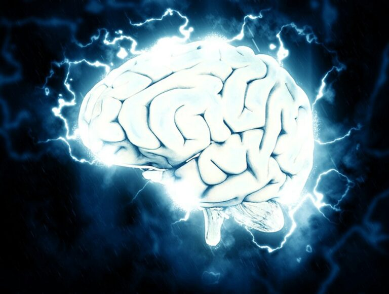 The Effects of Nootropic Brain Supplements