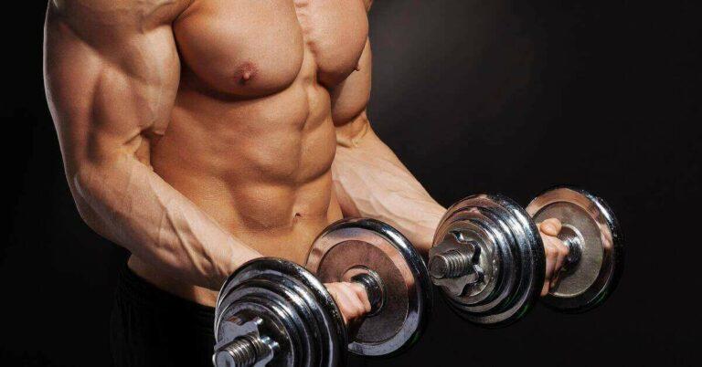 bulking up